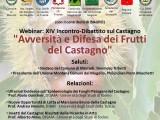 """locandina-invito XIV Incontro-Dibattito. """"Avversità e Difesa dei Frutti del Castagno"""""""