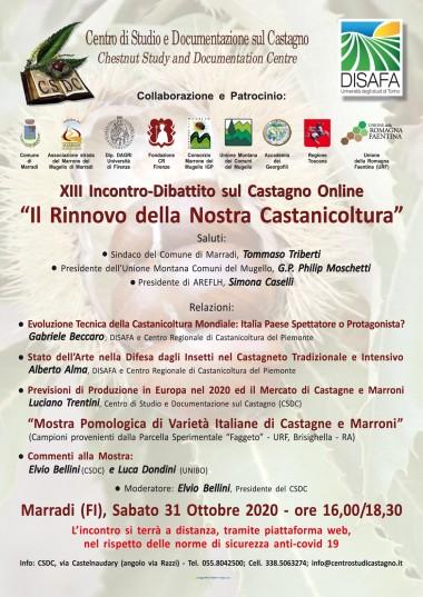 locandina/invito XIII Incontro-Dibattito sul Castagno